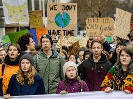 Os Jovens e o Meio Ambiente